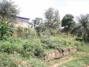 un terrain pour la construction
