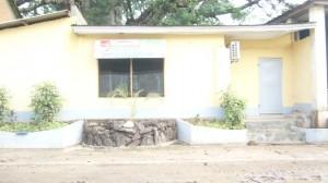 site touristique baobab de Stanley à Boma/Alpha Kingo