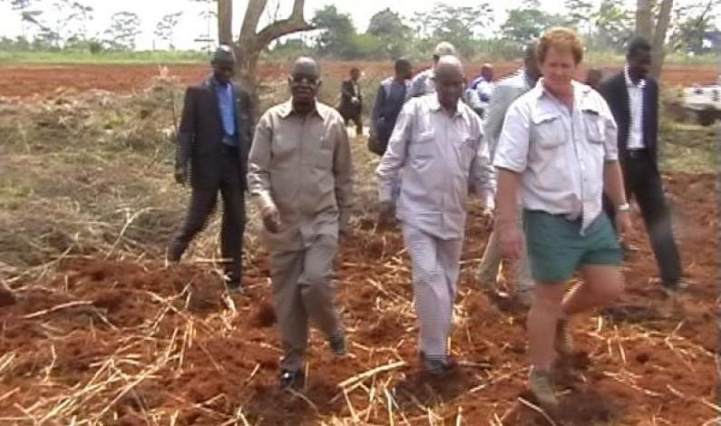 Bas-Congo : un partenariat avec des Sud-africains pour l'autosuffisance alimentaire