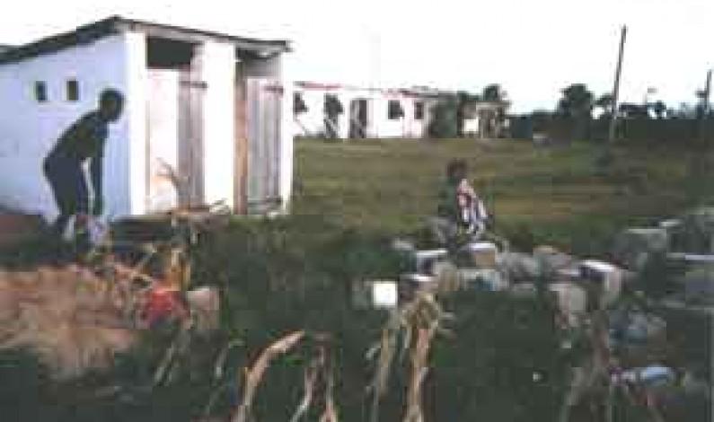 Matadi : jeté dans une fosse septique