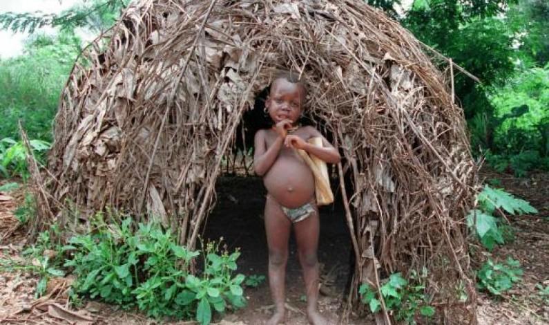 Nord-Kivu:les Pygmées refusent désormais le troc