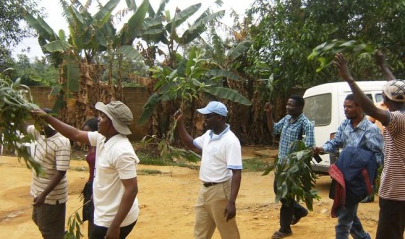 Bas-Congo : lassés des licenciements abusifs,ils veulent le départ du gestionnaire du péage