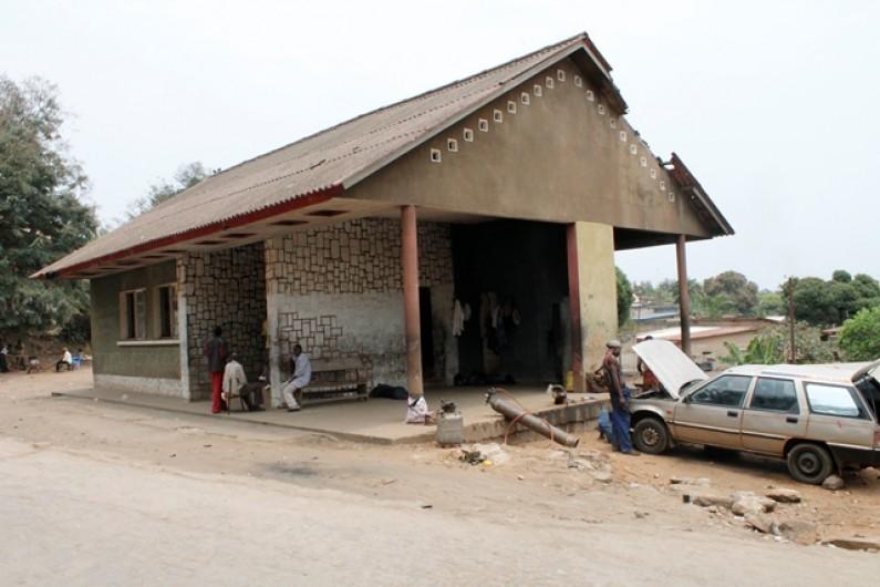Bas-Congo : vétérinaires délaissés, bétail décimé