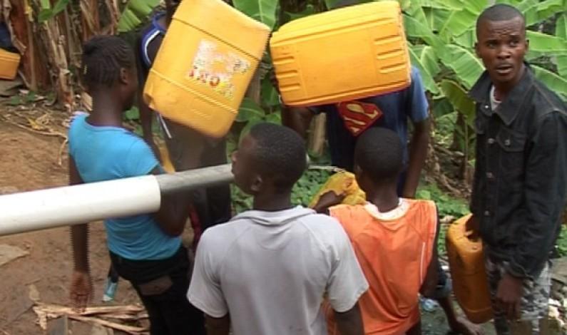 Bas-Congo : la déforestation tue les sources d'eau