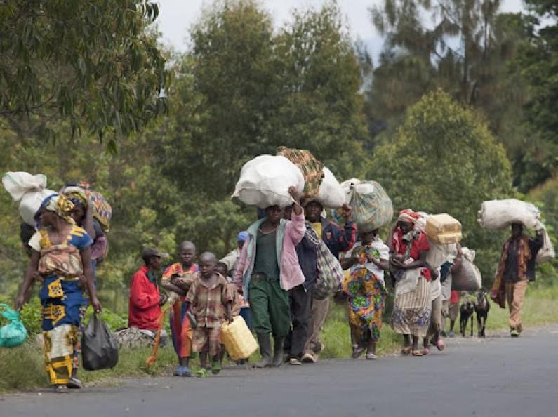 Sud-Kivu:trop d'obstacles à la réintégration des rebelles