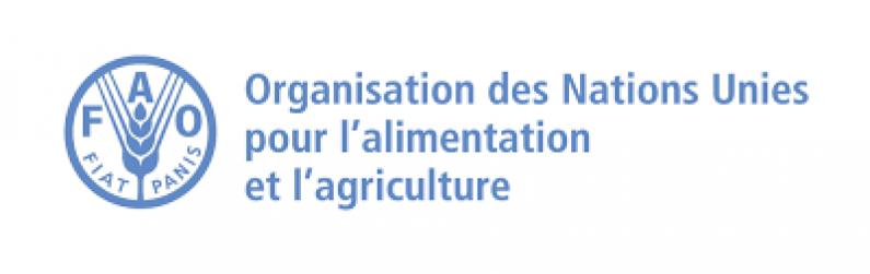 Organisation des Nations Unies pour l'alimentation et l'agriculture:Agent forestier (NFI et REDD +)