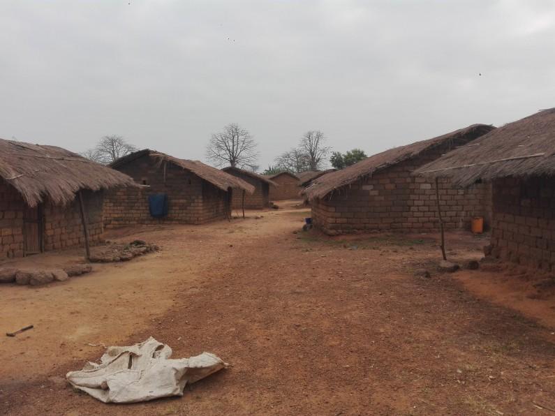 Vingt-quatre heures à Nkamuna, au Kongo central, localité du chanvre