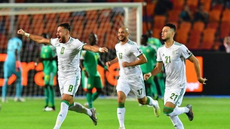 CAN 2019: l'Algerie sur le toit de l'Afrique