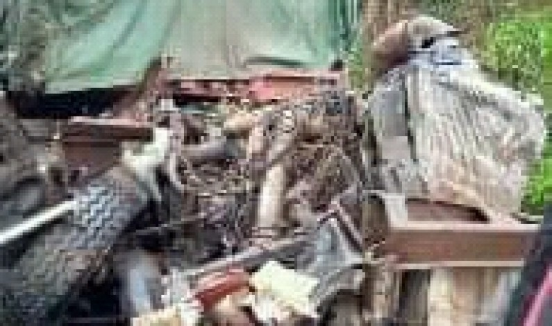 Mbanza-Ngungu: six morts des suites d'un accident