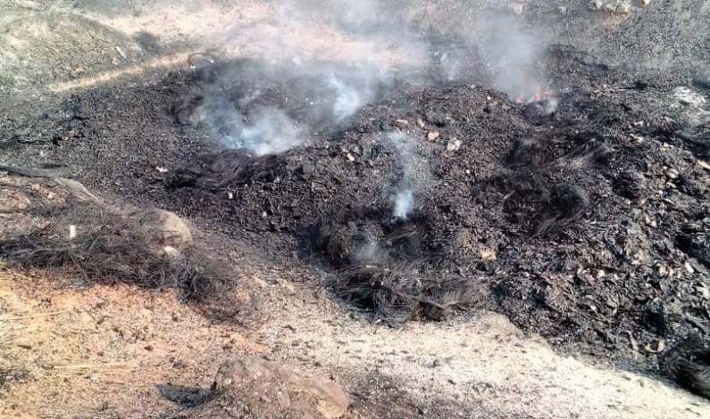 Matadi: 700 cartons de dipyrone détruits par le parquet général