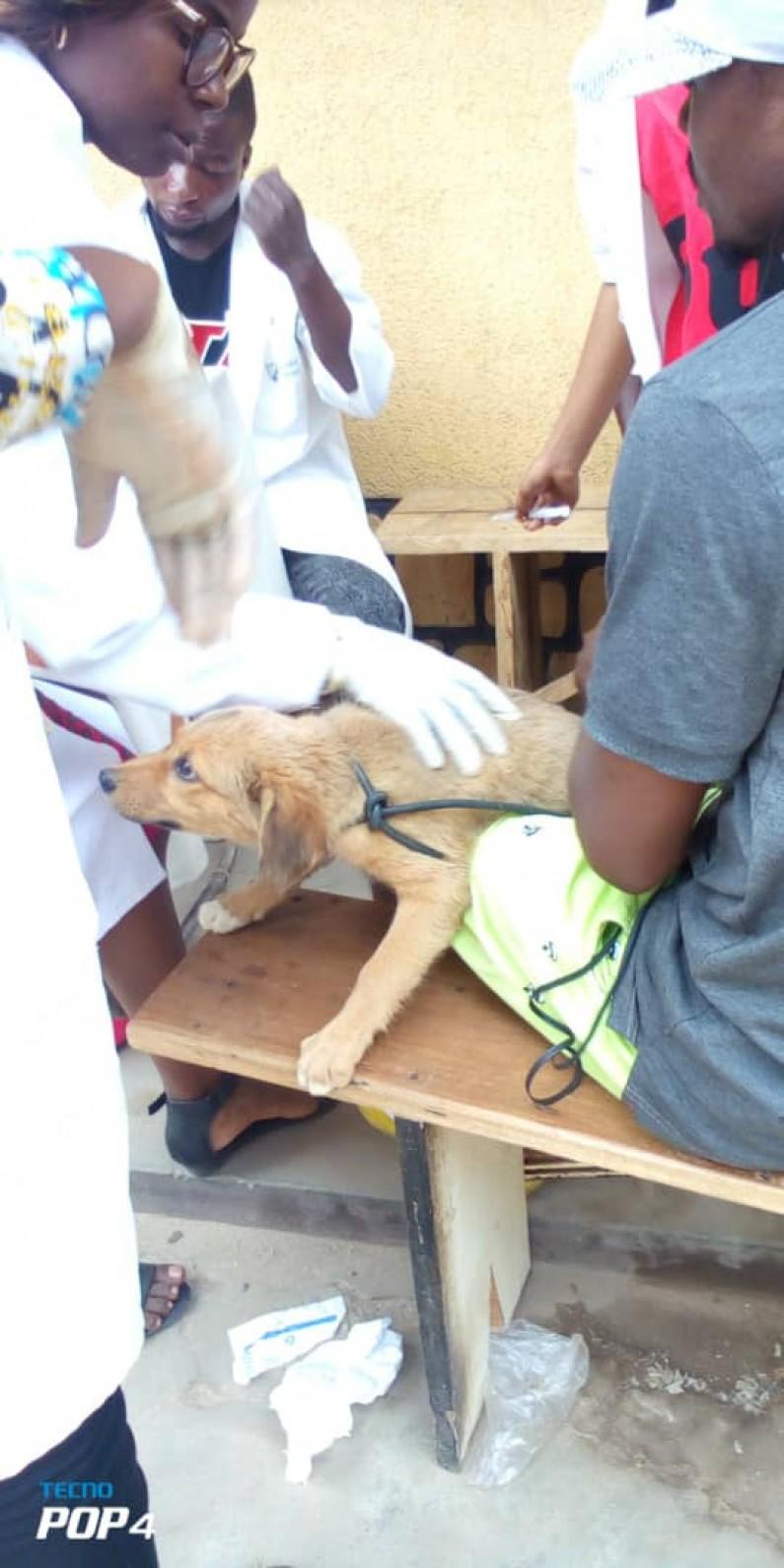 Au Kongo central, le bureau technique vétérinaire s'endette pour assurer la campagne de vaccination contre la rage