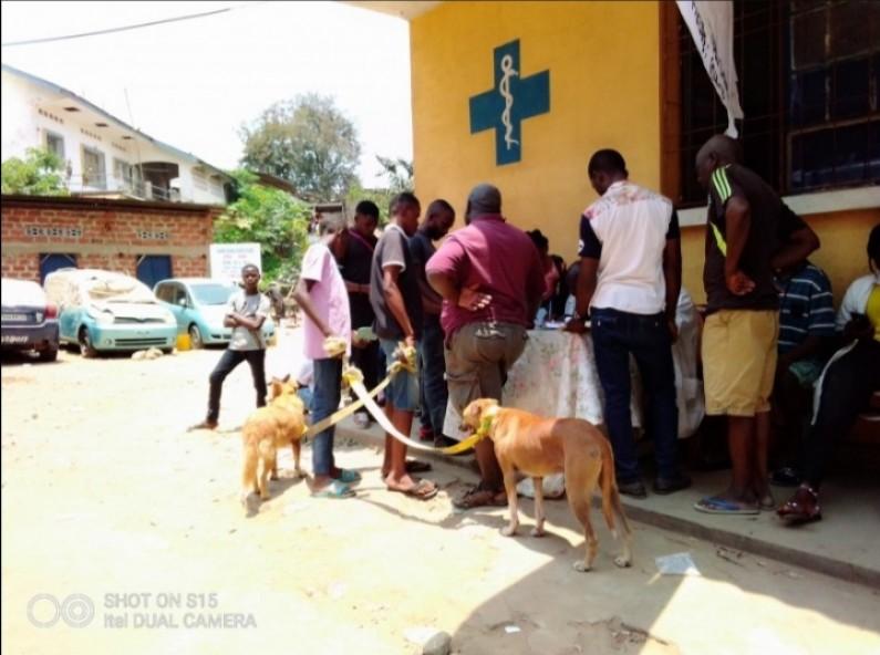 Au Kongo central, campagne de vaccination de masse des animaux de compagnie contre la rage dès le 28 septembre